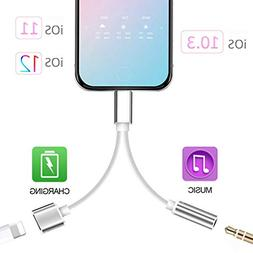 2 in 1 Lightning Adapter Compatible with iPhone XS Max/XS/XR